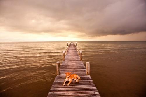 经典:justin mott的旅行风景摄影作品