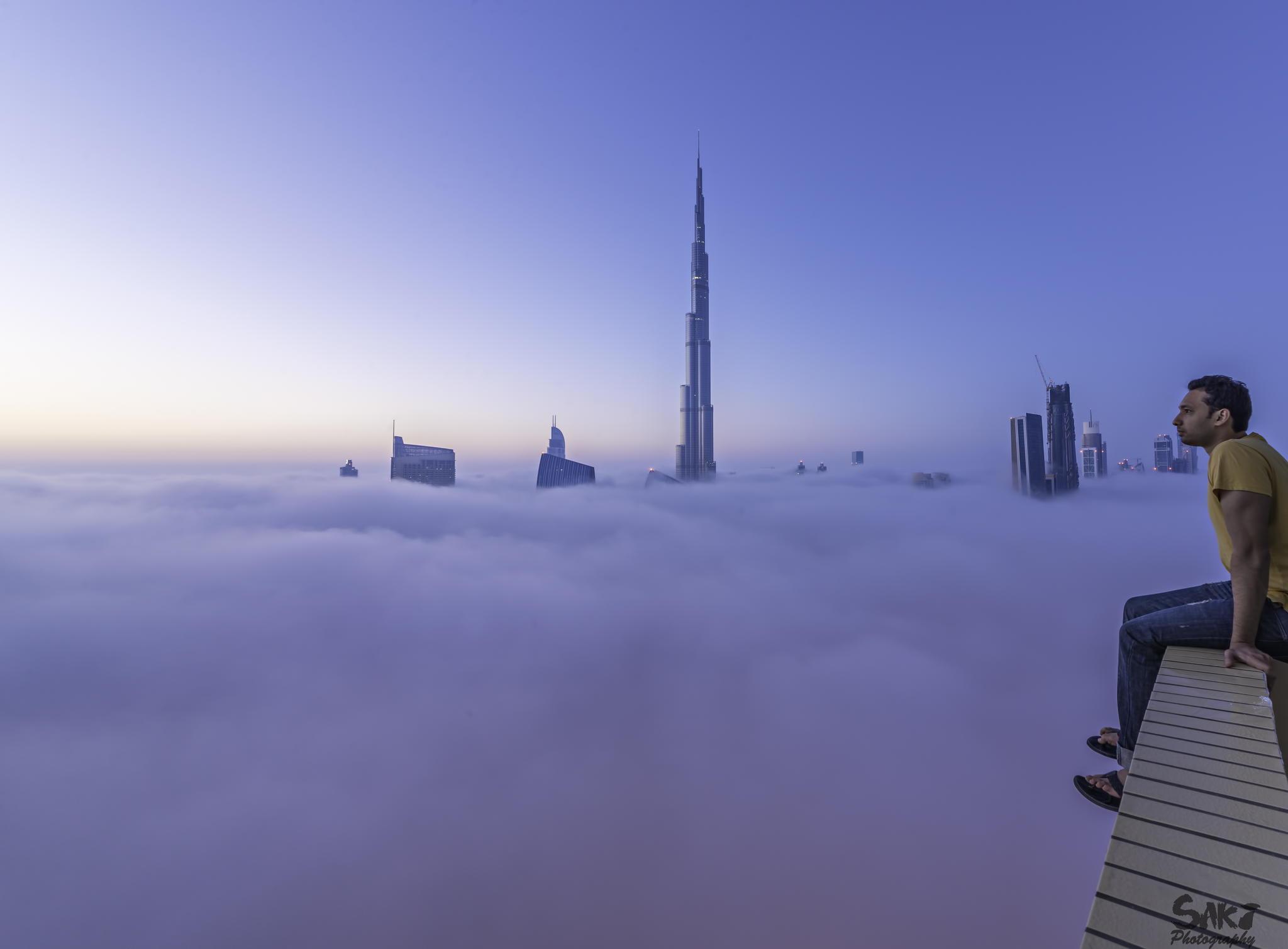 晨雾中的绝美风景[13p] - 100%纯净水 - 炫音音乐论坛