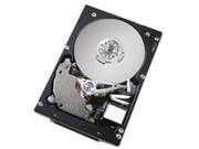 IBM 硬盘/750GB(43W7576)