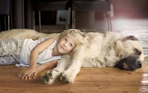 儿童与动物的合影照片