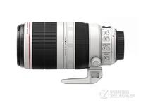 一镜走天下 佳能100-400mm f/4.5-5.6L