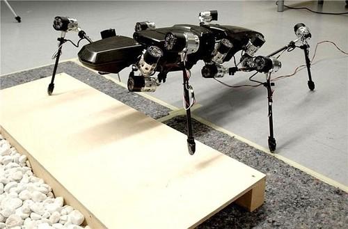 竹节虫机器人 轻松越过障碍探索外星球
