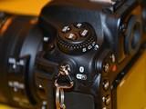 尼康D500实拍图
