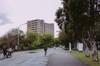 大C游世界 台湾第一学府台大干净马路