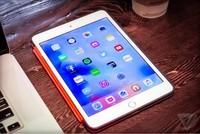 完美性价比?苹果iPad mini 4上手美图