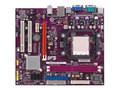 精英GeForce6100PM-M2(V3.0)