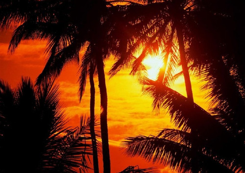 日落的多种表现方法