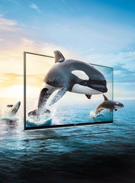壁纸 动物 鲸鱼 278_375 竖版 竖屏 手机