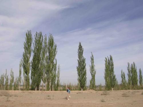 问敦煌穿越两千年  汉长城现大漠忠魂