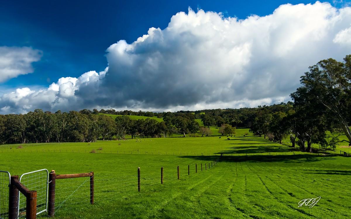 【高清图】 微软发布2款澳大利亚唯美风景win7主题图1