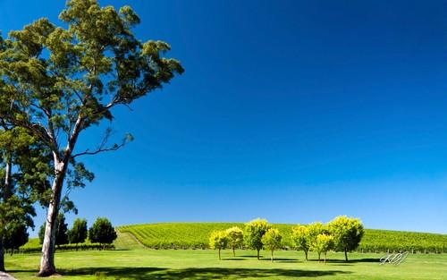 微软发布2款澳大利亚唯美风景win7主题