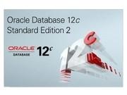 Oracle Database 12c 标准版 华中区仅有卓越级分销,价格优,服务更优