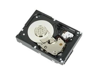 戴尔 10TB 7.2k RPM NLSAS 12Gbps 512e 3.5英寸 硬盘