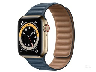Apple Watch Series 6 44mm(GPS+蜂窝网络/不锈钢表壳/皮制链式表带)