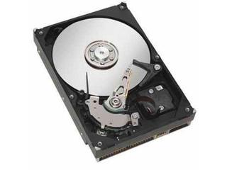 希捷250GB 7200.10 8M(并口/散)