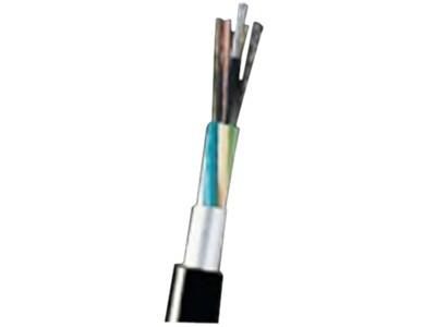 大唐保镖 室外架空多模12芯光缆(GYXTW-12A)