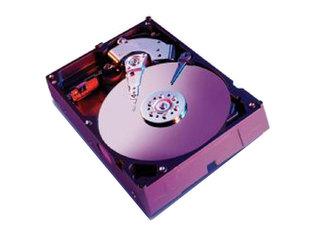 西部数据WD320GB